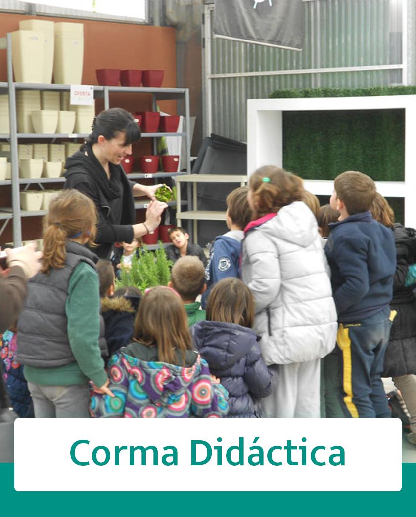 https://www.corma.es/modules/wimimagesblock/uploads/images/5fad6b77e3230.jpg