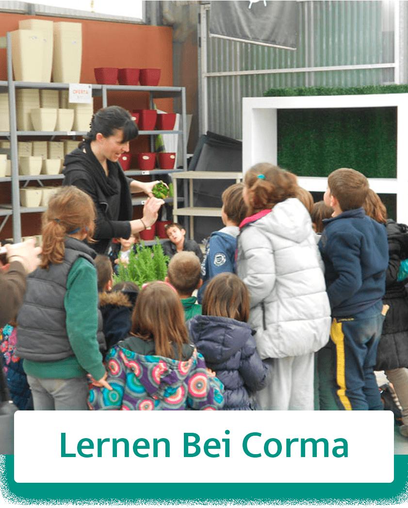 https://www.corma.es/modules/wimimagesblock/uploads/images/5fce17a2612b0.jpg